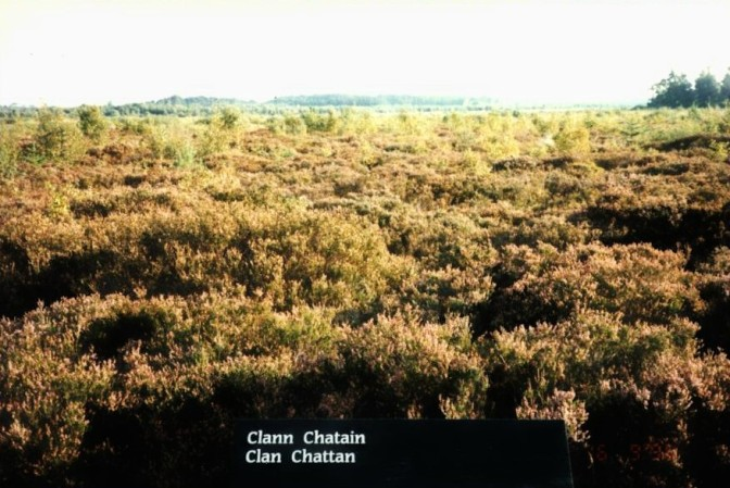 Culloden Clan Chattan Position