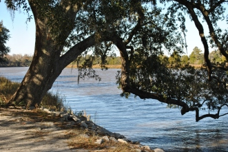 Charleston 2010 194