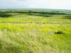 Ghosts of the Little Bighorn